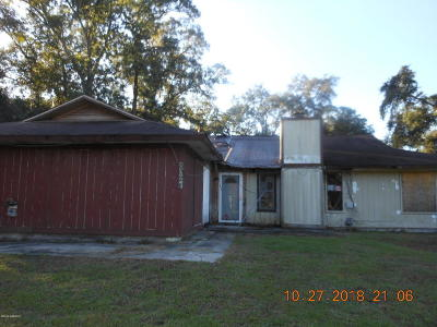 Beaufort County Single Family Home For Sale: 3028 Ratel Drive
