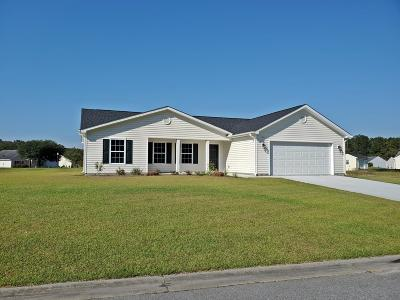 Ridgeland Single Family Home For Sale: 423 Colony Dr