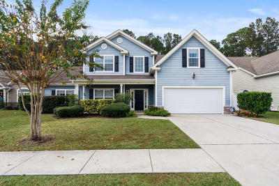 Beaufort County Single Family Home For Sale: 216 Station Parkway