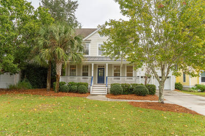 Beaufort County Single Family Home For Sale: 25 National Boulevard