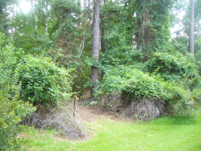 Okatie Residential Lots & Land For Sale: 12 River Bend Drive