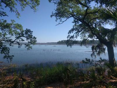 Okatie Residential Lots & Land For Sale: 45 Spring Island Drive