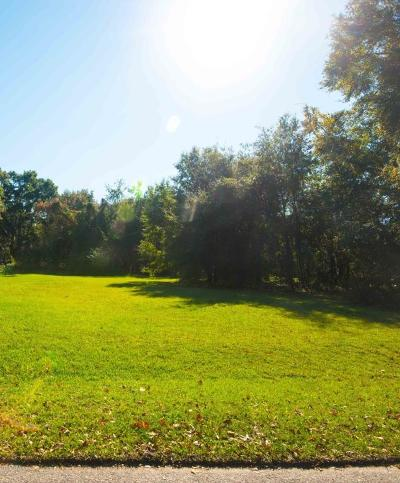 Seabrook Residential Lots & Land For Sale: 41 Seabrook Point Drive
