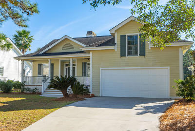 Beaufort County Single Family Home For Sale: 57 National Boulevard