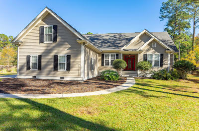 Beaufort County Single Family Home For Sale: 203 Green Winged Teal Drive S