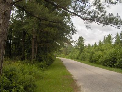 Ridgeland Residential Lots & Land Under Contract - Take Backup: 388 Cherry Hill Road