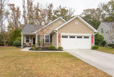 Beaufort County Single Family Home For Sale: 14 Cedar Creek Circle