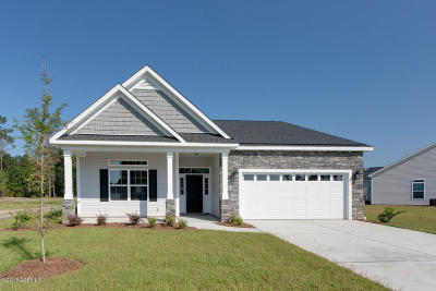 Beaufort County Single Family Home For Sale: 117 Pleasant Point Drive