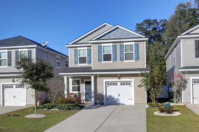 Beaufort County Single Family Home For Sale: 87 Starshine Circle