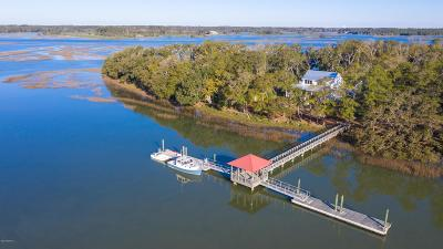 Beaufort County Single Family Home For Sale: 8 Connies Point Drive