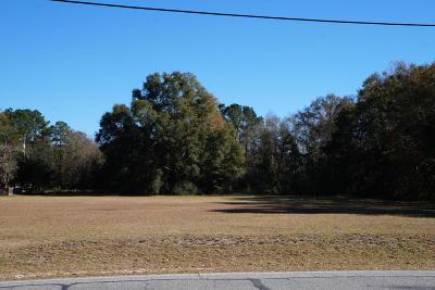 Ridgeland Residential Lots & Land For Sale: 480 A S Logan Street