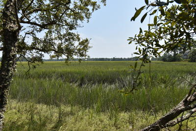 Fripp Island Residential Lots & Land For Sale: 370 Blue Gill Road
