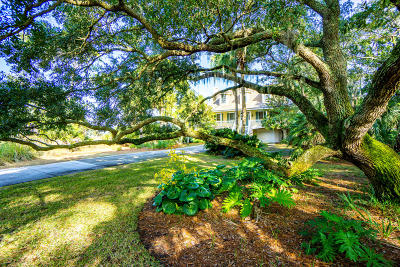 Beaufort County Single Family Home For Sale: 803 Sea Bass Drive