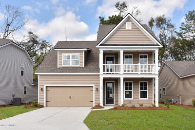 Beaufort County Single Family Home For Sale: 4140 Sage Drive