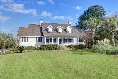 Beaufort County Single Family Home For Sale: 115 Dolphin Point Drive