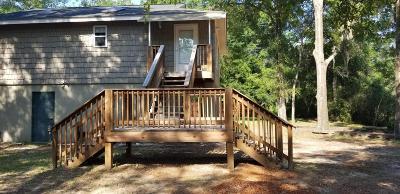 Baufort, Beaufort, Beaufot, Beufort Single Family Home For Sale: 11 Salt Creek Drive E