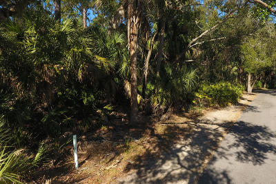 Fripp Island Residential Lots & Land For Sale: 9 Fiddlers Bend Drive