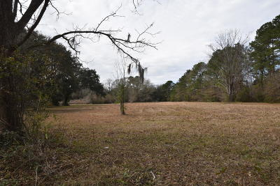 12 Paige Point, Seabrook, SC, 29940, Northern Beaufort County Home For Sale