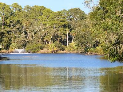 Fripp Island Residential Lots & Land For Sale: 23 Fiddlers Trace Road