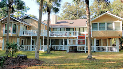 Beaufort County Single Family Home For Sale: 669 Dolphin Road