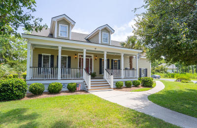 Beaufort Single Family Home For Sale: 47 E National Boulevard