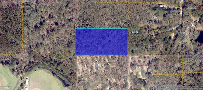 Residential Lots & Land For Sale: Lot 27 Parcel 102 Hall Path