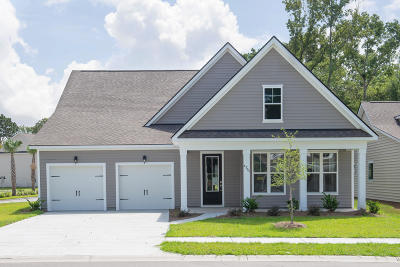 Beaufort County Single Family Home For Sale: 4205 Sage Drive