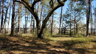 Ridgeland Residential Lots & Land For Sale: 8878 Coosaw Scenic Drive