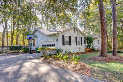 Beaufort County Single Family Home For Sale: 45 Sea Gull Drive
