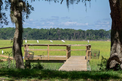 St. Helena Island Single Family Home For Sale: 57 Dockside Lane