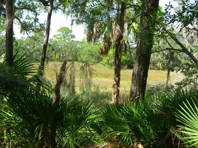 Fripp Island Residential Lots & Land For Sale: 916 Stone Crab Cove