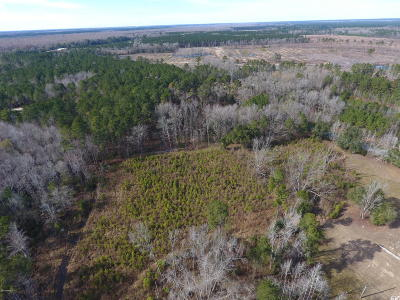 0 Highway 63, Islandton, SC, 29929, Adjacent Counties Home For Sale