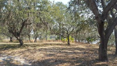 Beaufort County Residential Lots & Land For Sale: 2 Cattail Court