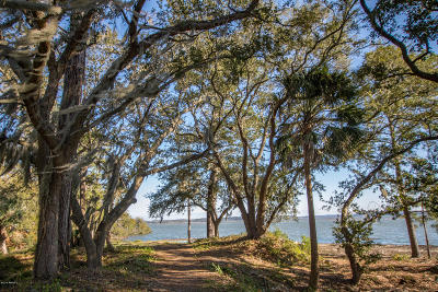 Beaufort County Condo/Townhouse For Sale: 28 Battery Lane