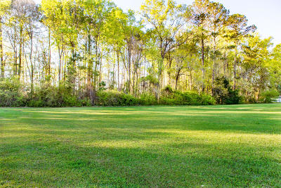 Seabrook Residential Lots & Land For Sale: 5 Seabrook Point Drive