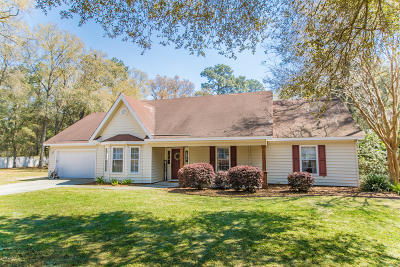 Beaufort County Single Family Home Under Contract - Take Backup: 17 Christine Drive