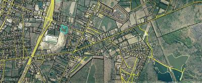 8604 Grahamville, Ridgeland, SC, 29936, Ridgeland Home For Sale