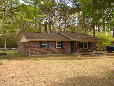 Beaufort Single Family Home For Sale: 195 Bay Pines Road