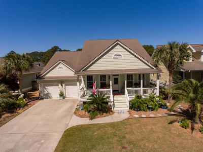 Beaufort County Single Family Home For Sale: 42 National Boulevard