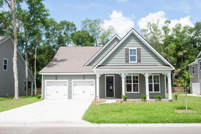 Beaufort County Single Family Home For Sale: 4260 Sage Drive