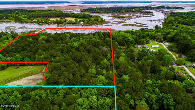Ridgeland Residential Lots & Land For Sale: 115 Stoney Crest Road