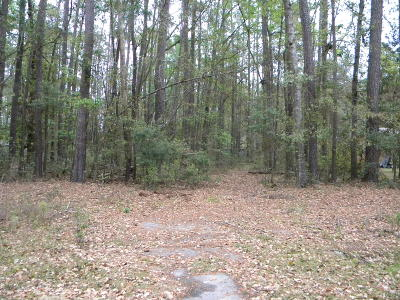 Ridgeland Residential Lots & Land For Sale: 120 Blue Gill Lane