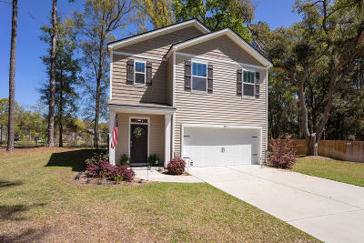 Beaufort County Single Family Home Under Contract - Take Backup: 4915 Breeze Way