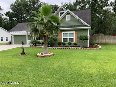 Beaufort County Single Family Home For Sale: 33 Laughing Gull Drive