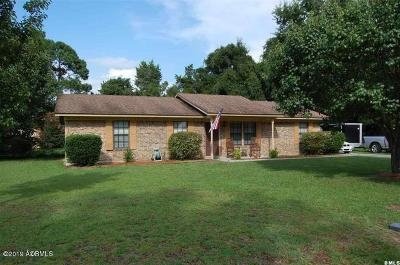 Beaufort County Single Family Home Under Contract - Take Backup: 705 Dawn Street