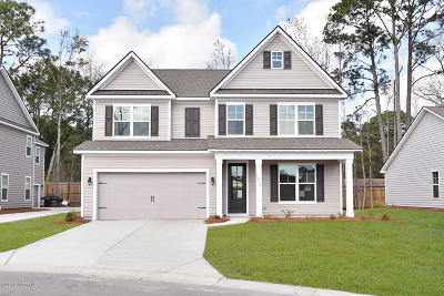 Beaufort County Single Family Home For Sale: 4225 Sage Drive