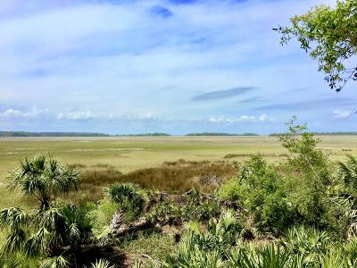 Fripp Island Residential Lots & Land For Sale: 120 Davis Love Drive