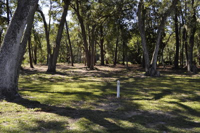 Beaufort County Residential Lots & Land For Sale: 24 Timber Trail