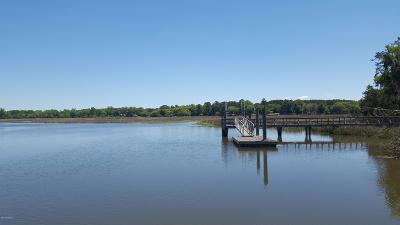 234 Bull Point, Seabrook, 29940 Photo 5