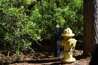 11 Vista, St. Helena Island, SC, 29920, St Helena Island Home For Sale